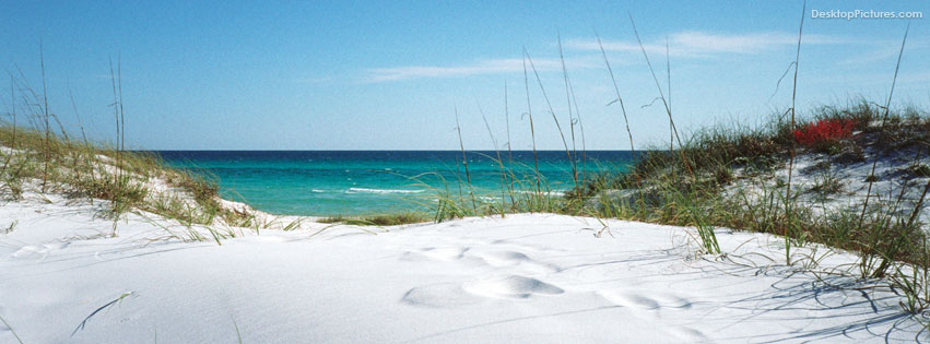 Florida Beaches - Grayton Beach Dunes