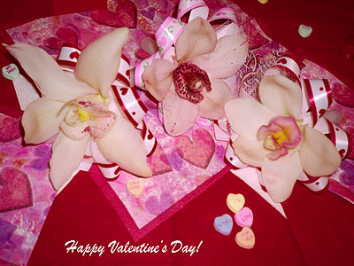 Happy Valentines  Wallpaper on For Free Wallpaper Or Desktop Pictures Of Happy Valentine S Day